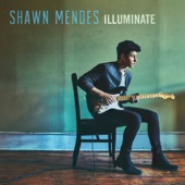 Shawn Mendes - There's Nothing Holdin' Me Back artwork