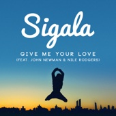 Give Me Your Love (feat. John Newman & Nile Rodgers) [Radio Edit]