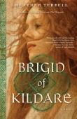 Brigid of Kildare - Heather Terrell Cover Art