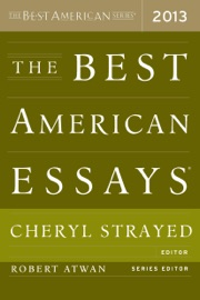 education in search of the spirit essays on american education