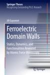 Ferroelectric Domain Walls