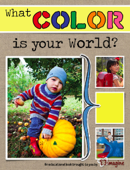 What Color Is Your World?