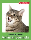 Touch N Learn  Animal Sounds