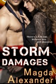 Magda Alexander - Storm Damages  artwork