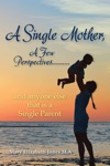 A Single Mother A Few PerspectivesAnd Anyone Else That Is A Single Parent