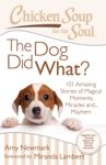 Chicken Soup For The Soul The Dog Did What