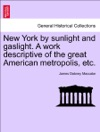 New York By Sunlight And Gaslight A Work Descriptive Of The Great American Metropolis Etc