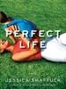 Perfect Life: A Novel