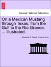 On A Mexican Mustang Through Texas From The Gulf To The Rio Grande  Illustrated