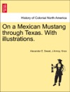 On A Mexican Mustang Through Texas With Illustrations