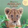 African Cats A Lions Pride