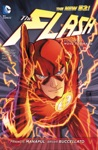The Flash Vol 1 Move Forward