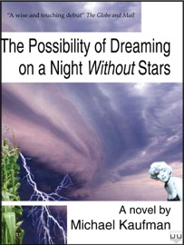 THE POSSIBILITY OF DREAMING ON A NIGHT WITHOUT STARS