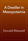 Donald Maxwell - A Dweller in Mesopotamia artwork