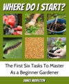 Where Do I Start The First Six Tasks To Master As A Beginner Gardener