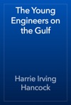 The Young Engineers On The Gulf