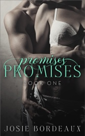 Promises, Promises book summary