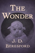 J. D. Beresford - The Wonder  artwork