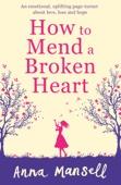 Anna Mansell - How to Mend a Broken Heart artwork