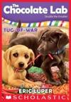 Tug-of-War The Chocolate Lab 2