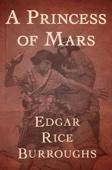 Edgar Rice Burroughs - A Princess of Mars  artwork