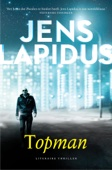 Jens Lapidus - Topman kunstwerk