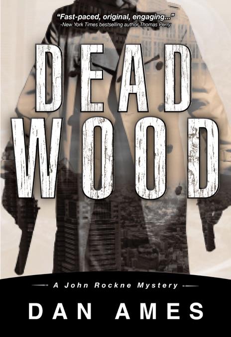 Dead Wood Dan Ames Book