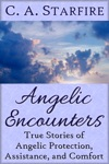 Angelic Encounters True Stories Of Angelic Protection Assistance And Comfort