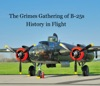 The Grimes Gathering Of B-25s