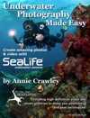 Underwater Photography Made Easy