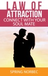 Law Of Attraction Connect With Your Soul Mate