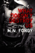 M.N. Forgy - What Doesn't Destroy Us  artwork