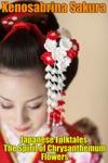 Japanese Folktales The Spirit Of Chrysanthemum Flowers