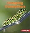 Creeping Caterpillars