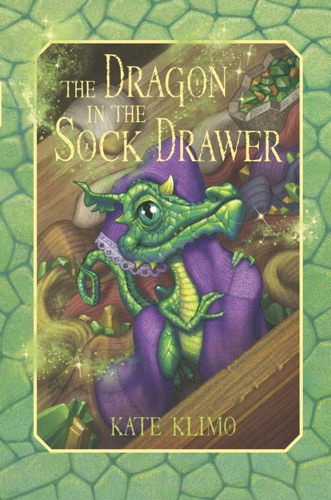 Dragon Keepers 1 The Dragon in the Sock Drawer
