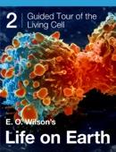 Edward O. Wilson, Morgan Ryan & Gaël McGill - E. O. Wilson's Life on Earth Unit 2 artwork