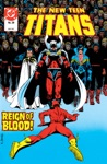 The New Teen Titans 1984-1988 29