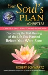 Your Souls Plan EChapters - Chapter 5 Drug Addiction And Alcoholism