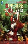 Suicide Squad Vol 1 Kicked In The Teeth The New 52