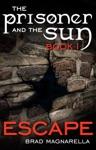 Escape The Prisoner And The Sun 1