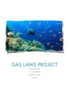 Hornsby Gas Law Project
