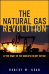 Natural Gas Revolution The At The Pivot Of The Worlds Energy Future