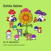 Dahlia Babies