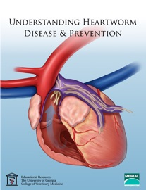 DOWNLOAD OF UNDERSTANDING HEARTWORM DISEASE & PREVENTION PDF EBOOK