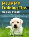 Puppy Training Tips For Busy People
