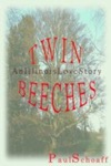 Twin Beeches An Illinois Love Story