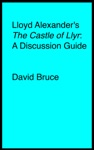 Lloyd Alexanders The Castle Of Llyr A Discussion Guide