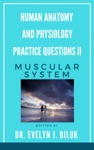 Human Anatomy And Physiology Practice Questions II Muscular System