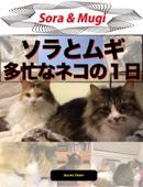 ソラとムギ多忙なネコの1日