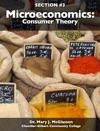 Microeconomics Consumer Theory